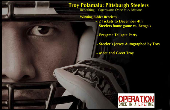 Troy Polamalu pic